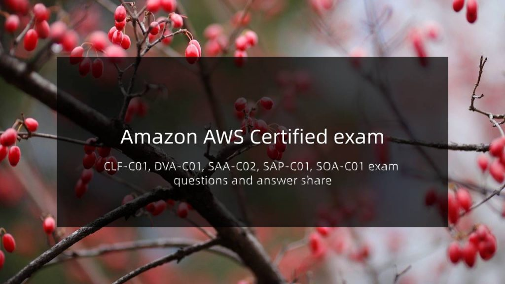Amazon AWS exam questions and answer share